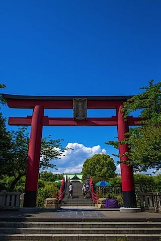 kameidot_201405.jpg